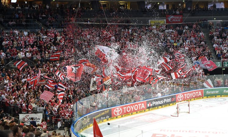 Kšlner Haie Fanblock   Foto: Jan-Philipp Burmann / City-Press GbR Fotografenkennung: JB-1